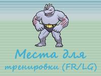 Тренировка покемонов